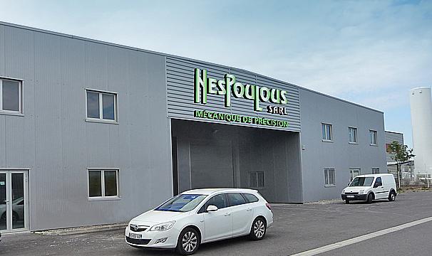 MMP3B_Nespoulous
